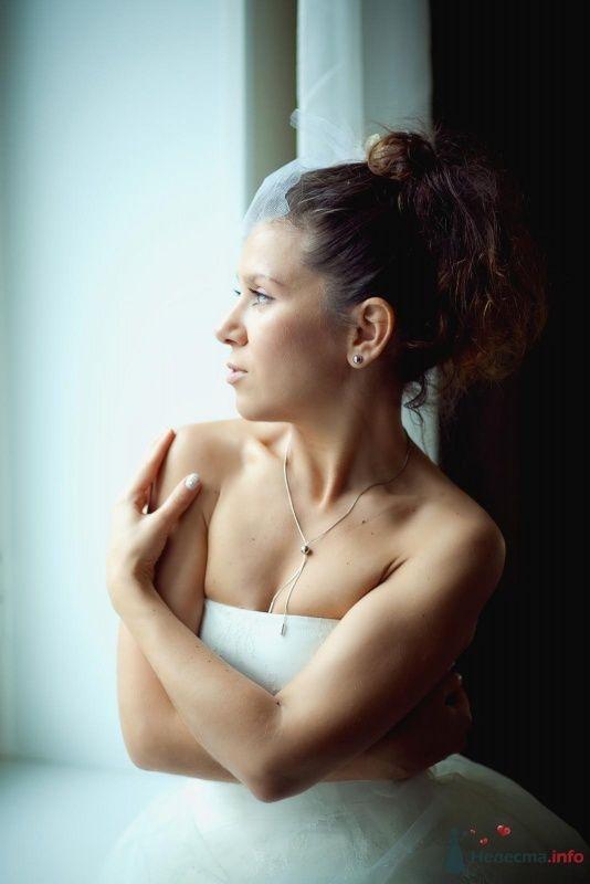 Фото 60586 в коллекции Мои фотографии - Karamelka086