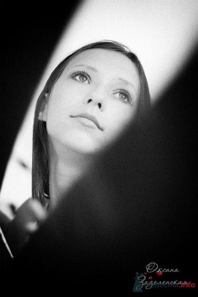Фото 43973 в коллекции Разное - Фотограф Оксана Зазеленская