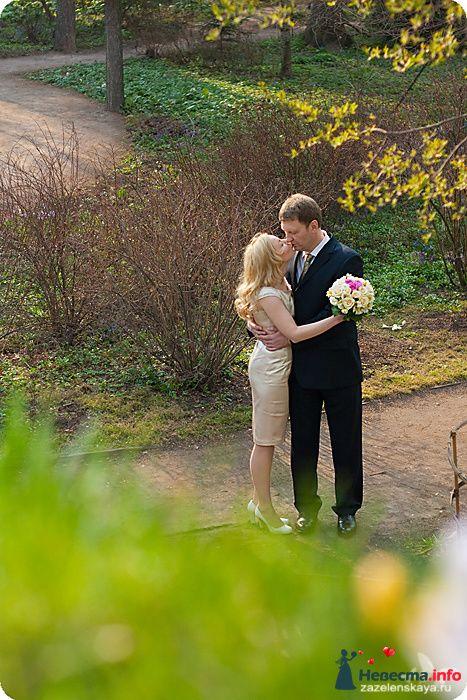 Фото 90476 в коллекции Свадьбы - Фотограф Оксана Зазеленская