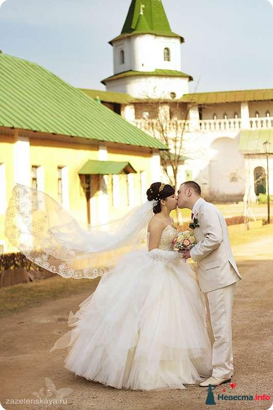 Фото 90494 в коллекции Свадьбы - Фотограф Оксана Зазеленская