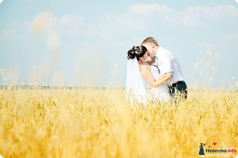 Юля и Саша - 17.07.10 - фото 124010 Фотограф Оксана Зазеленская