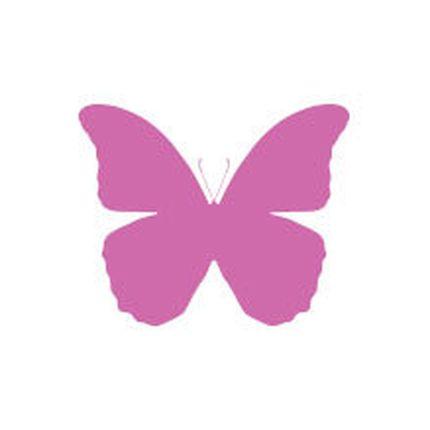 Открытка с тропической бабочкой, крылья 5-10 см., разные виды