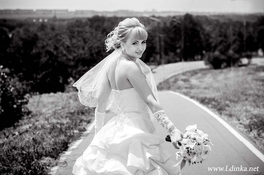 Фото 2011642 в коллекции Мои фотографии - Профессиональный фотограф Любовь Дубовик