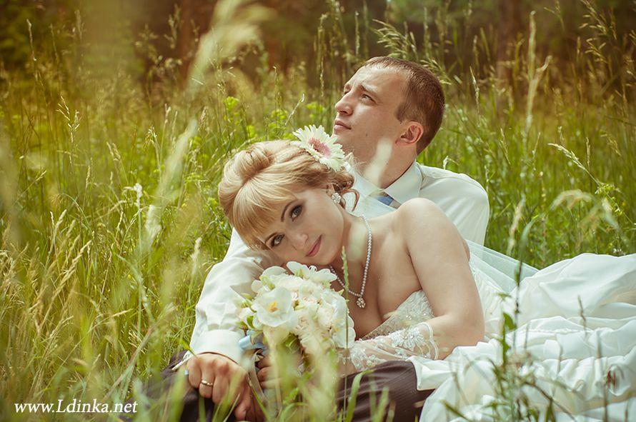 Фото 2011646 в коллекции Мои фотографии - Профессиональный фотограф Любовь Дубовик