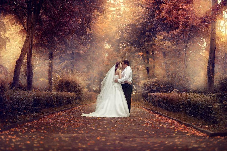 Фото 605511 в коллекции Свадьбы - Фотостудия Батурина Дениса