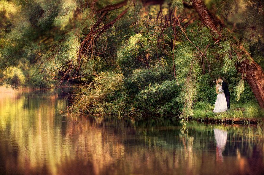 свадебное фото Батурин Денис - фото 1913831 Фотостудия Батурина Дениса