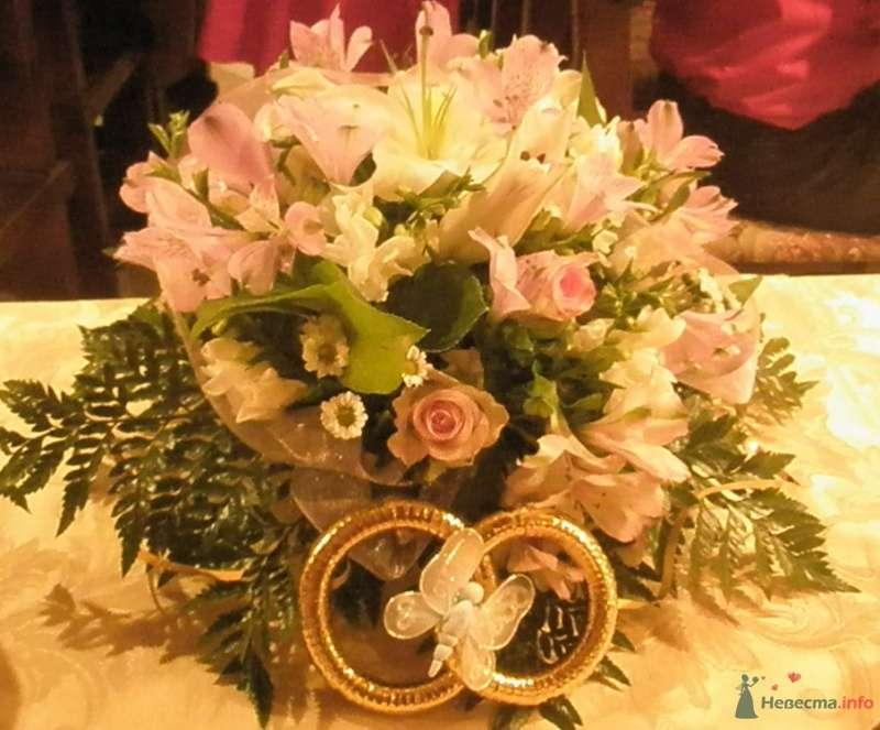Фото 36429 в коллекции Оленька и Андрюша :) Свадьба! - malysh_eva