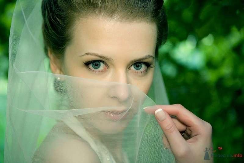 Фото 36451 в коллекции Наша свадьба by sandakov.ru -- фотографы Егор и Михаил - malysh_eva