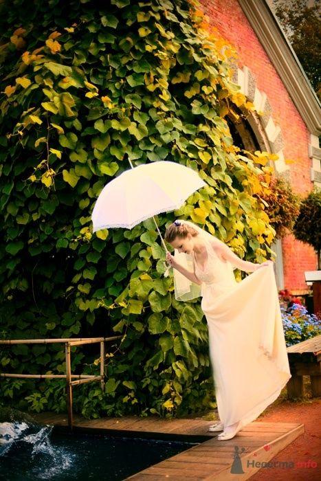 Фото 40809 в коллекции Наша свадьба by kaioshk.ru -- фотограф Мария Ширяева