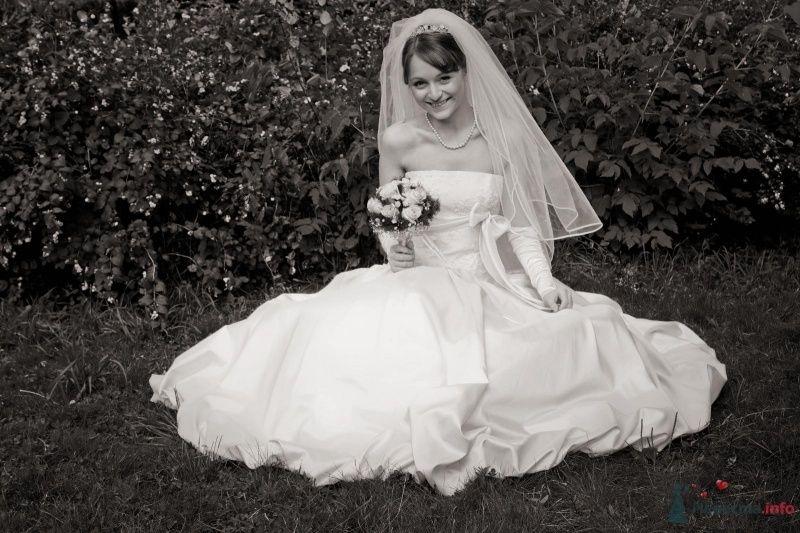 Фото 41485 в коллекции наша веселая свадьба