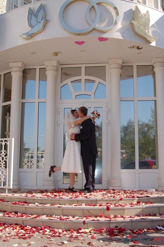 Фото 42839 в коллекции Моя свадьба - Афалина