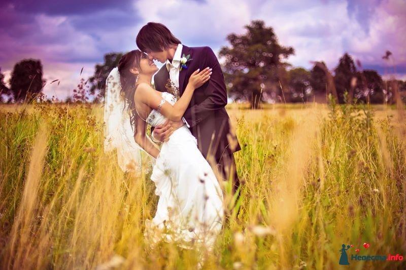 Фото 378296 в коллекции Мои фотографии - Свадебный фотограф Сермяжко Дмитрий
