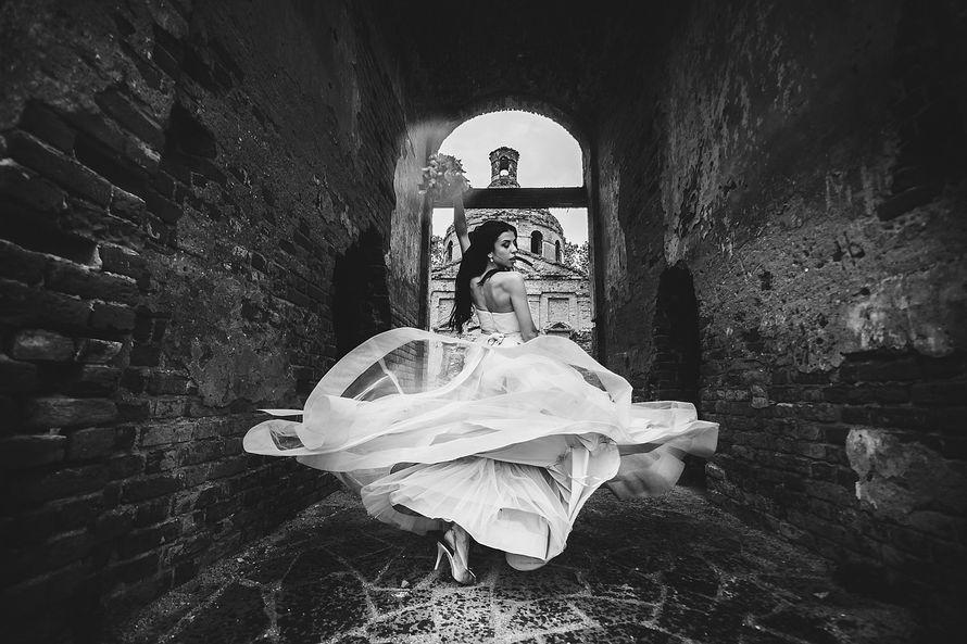 Фото 6152045 в коллекции Портфолио - Фотограф Дмитрий Гвоздик