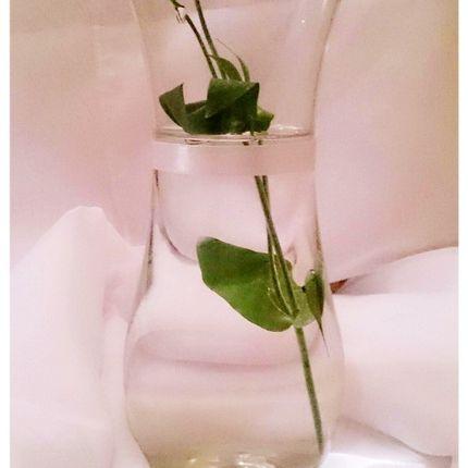 Аренда стеклянных ваз
