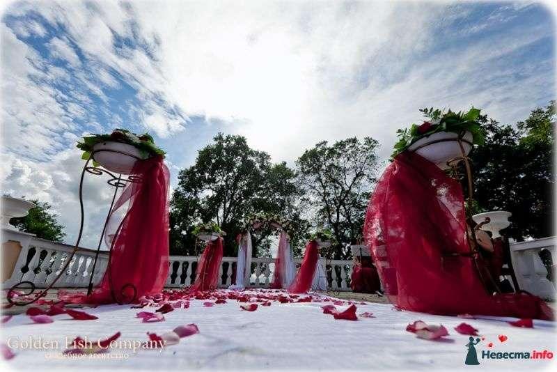 Фото 389587 в коллекции Свадебные фотографии - Свадебное Агентство Golden FIsh Company