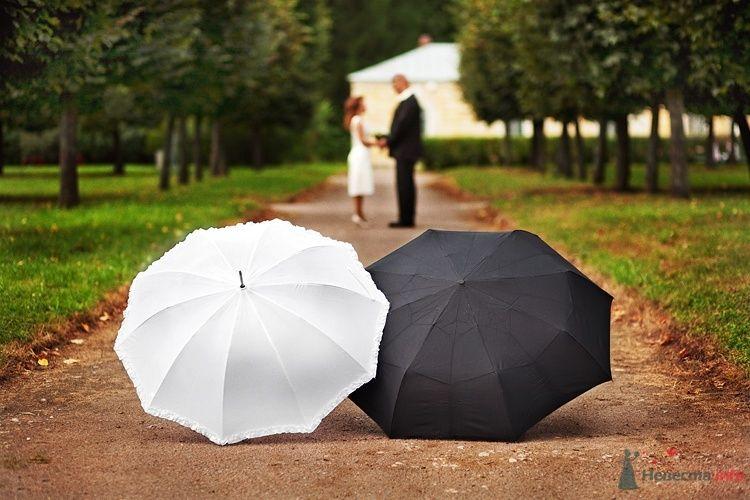 Прогулка молодоженов в парке, оформленная зонтами черного и белого цвета - фото 35830 Свадебный фотограф Евгений Земцов