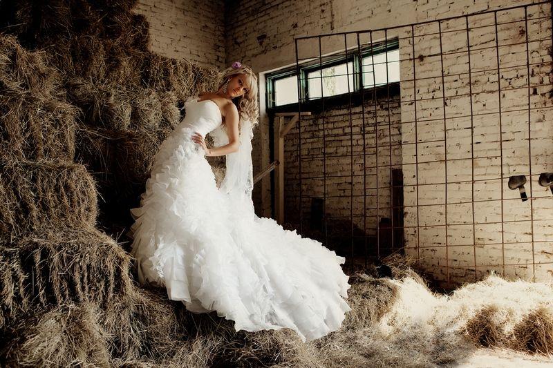 Фото 599587 в коллекции Мои фотографии - Свадебный фотограф Рита Селезнева