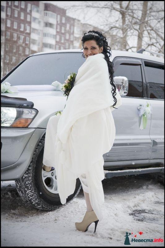 Зимняя красотка. - фото 391544 Свадебный фотограф Белуга Михаил