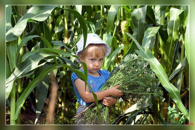 Фото 40369 в коллекции Дети - Фотограф Корочкин Олег