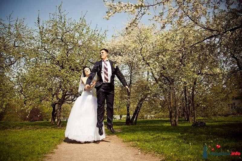Фото 472686 в коллекции Свадебное. - Фотограф Андрей Завьялов