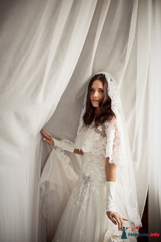 Фото 481952 в коллекции Свадебное. - Фотограф Андрей Завьялов