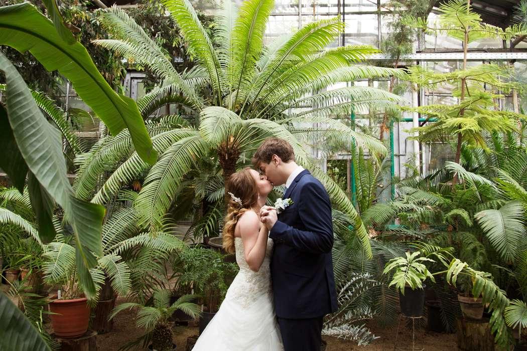 вермишель можно оранжерея ботанического сада спб свадебные фото рассмешите