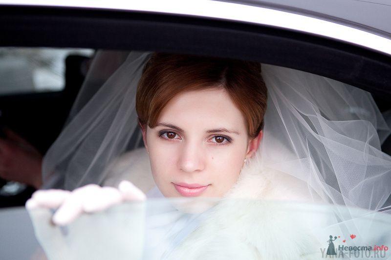 зимняя свадьба Киры и Дмитрия - фото 75786 Фотограф Яна Роджерс