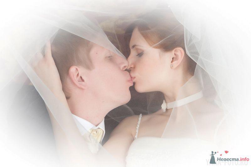 зимняя свадьба Киры и Дмитрия - фото 75798 Фотограф Яна Роджерс