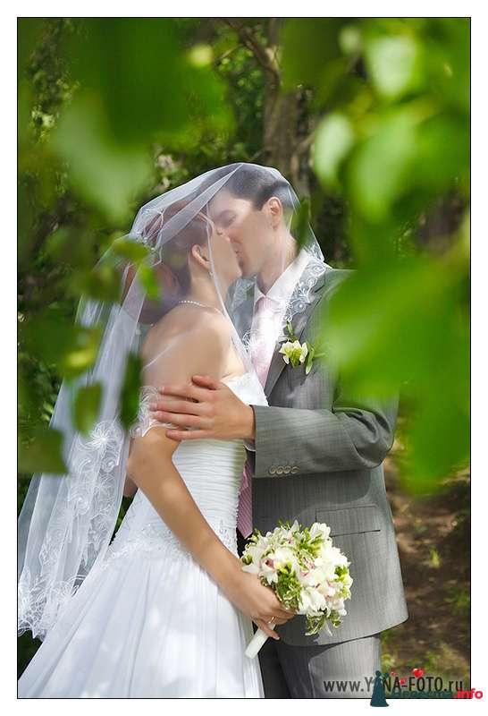 Фото 107480 в коллекции Свадьба Ольги и Рината - Фотограф Яна Роджерс