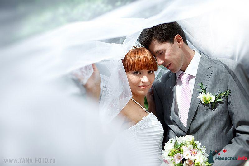 Фото 129996 в коллекции Свадьба Ольги и Рината - Фотограф Яна Роджерс