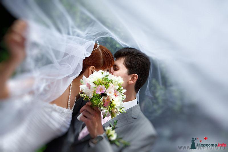 Фото 130940 в коллекции Свадьба Ольги и Рината - Фотограф Яна Роджерс