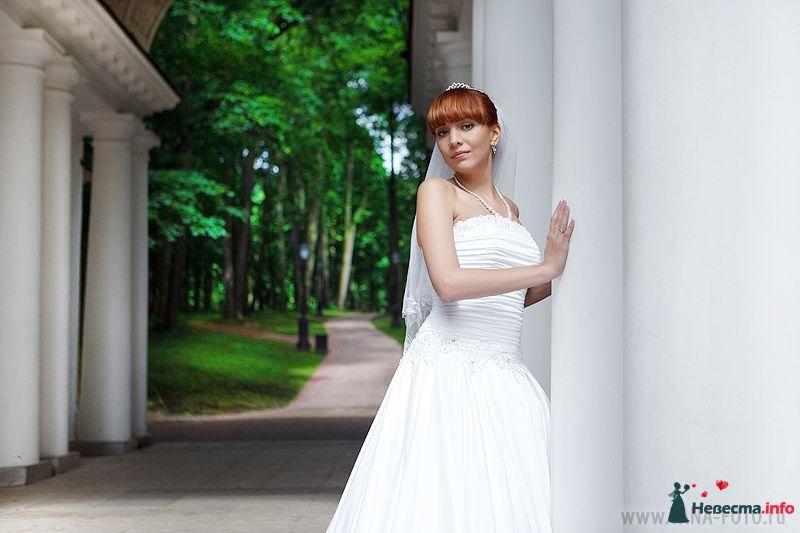 Фото 130962 в коллекции Свадьба Ольги и Рината - Фотограф Яна Роджерс