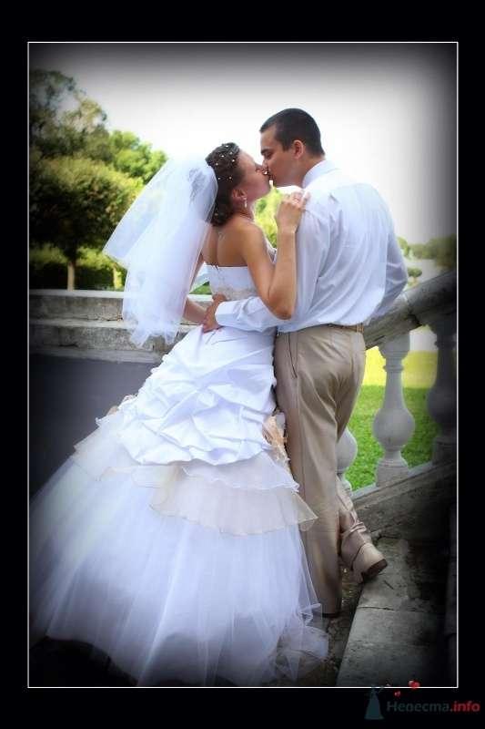 Фото 60214 в коллекции моя свадьба - vesna086