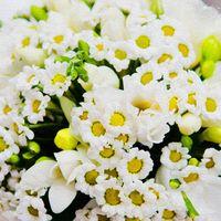 Букет невесты из белых фрезий и ромашек