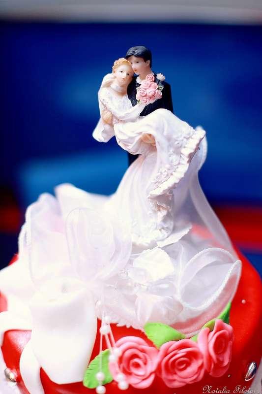 Фото 7841078 в коллекции Свадебная съемка - Фотограф  Наталия Филатова