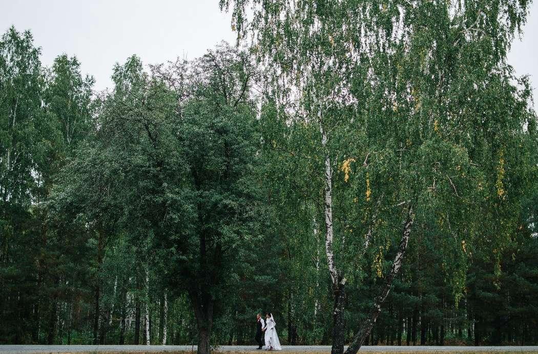Фото 7891640 в коллекции Портфолио - Фотограф Zhanna Kletskaya