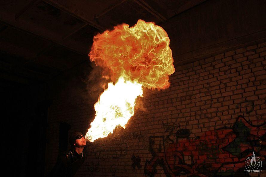 """Фото 7973820 в коллекции Огненно-пиротехническое шоу - Огненное и пиротехническое шоу """"Incendio"""""""