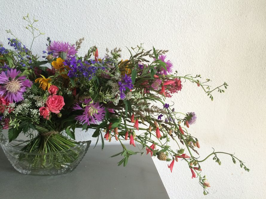 Фото 7996370 в коллекции Floristry - Флористика Travkamuravka