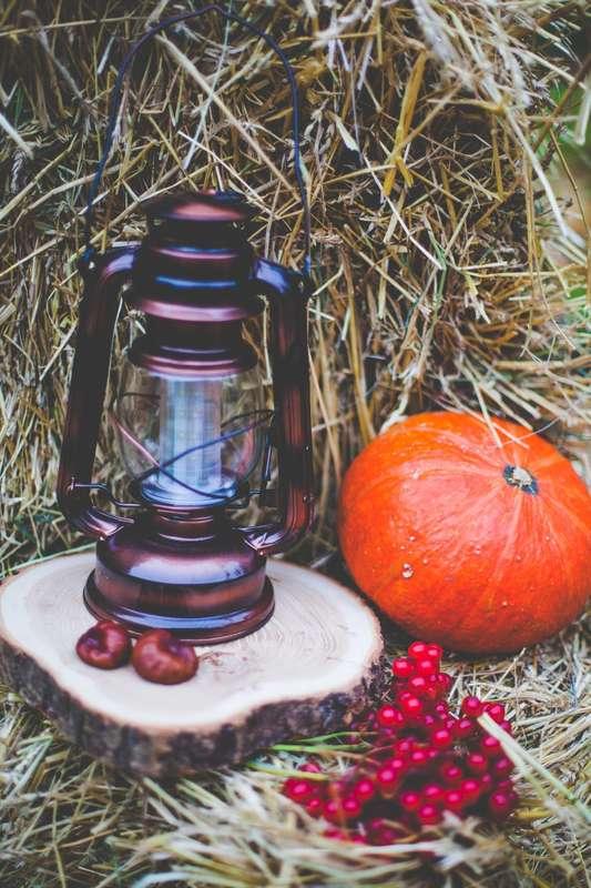 """Фото 8040888 в коллекции Осенняя фотозона - """"Важный день"""" - декор и флористика"""