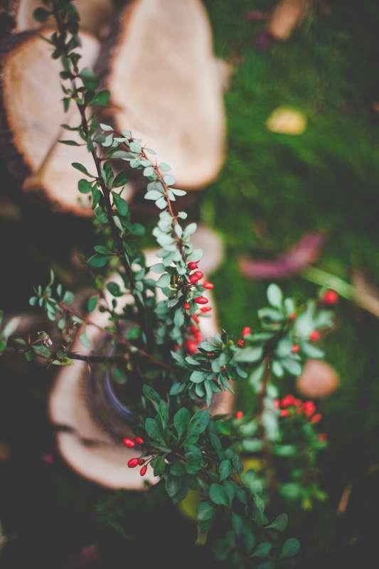 """Фото 8040906 в коллекции Осенняя фотозона - """"Важный день"""" - декор и флористика"""