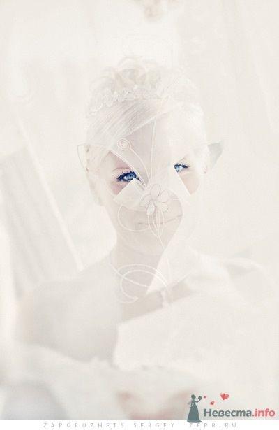 Фото 30887 в коллекции Новая свадебная фотография / Запорожец Сергей - Фотограф Запорожец Сергей