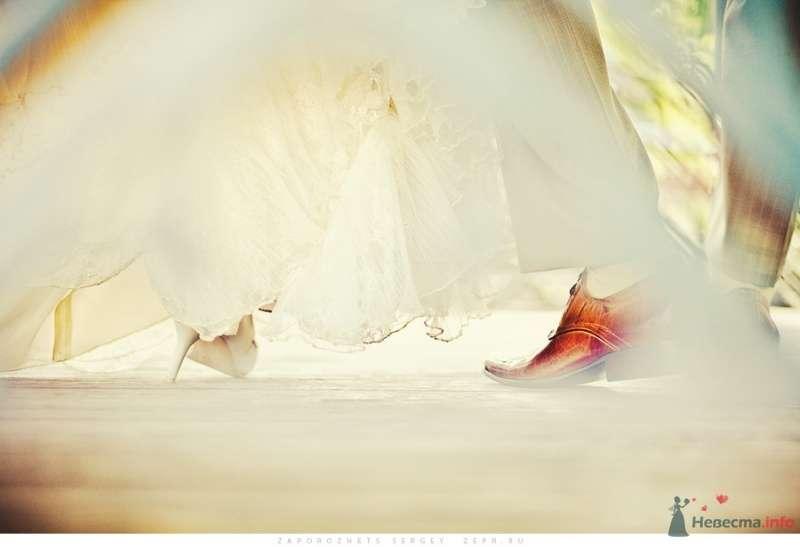 Фото 30892 в коллекции Новая свадебная фотография / Запорожец Сергей - Фотограф Запорожец Сергей