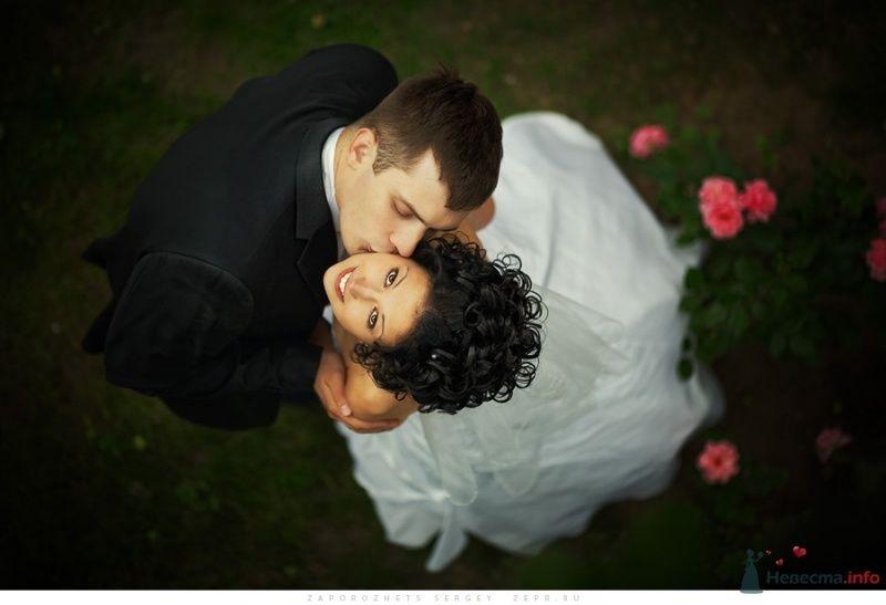 Фото 30899 в коллекции Новая свадебная фотография / Запорожец Сергей - Фотограф Запорожец Сергей