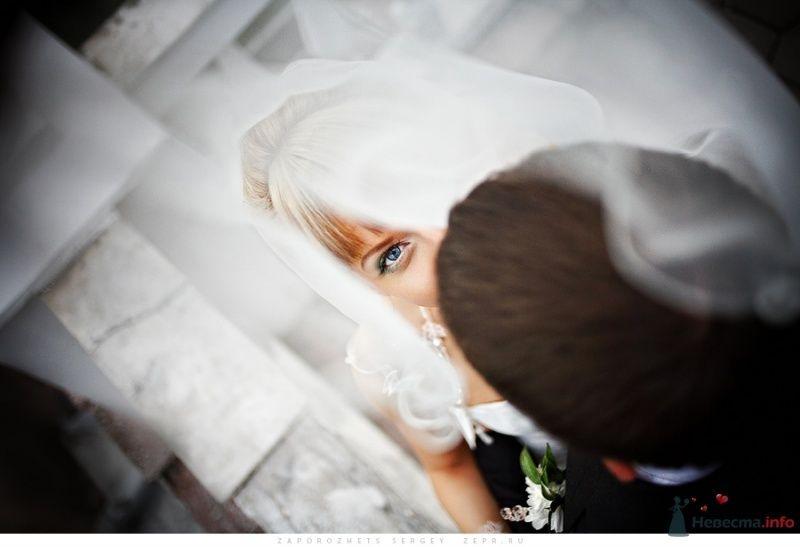 Фото 33506 в коллекции Новая свадебная фотография / Запорожец Сергей - Фотограф Запорожец Сергей