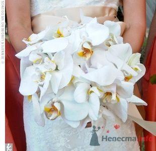 Фото 64766 в коллекции Свадебные штуки)