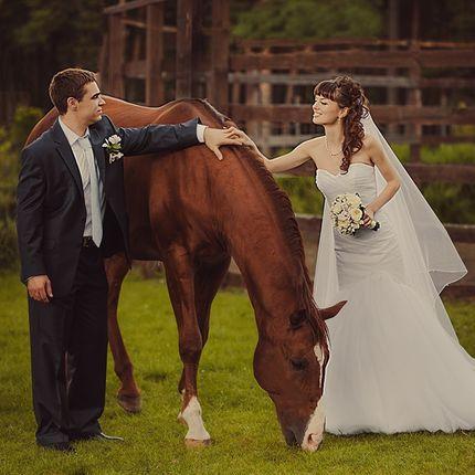 Фотосессия с лошадкой