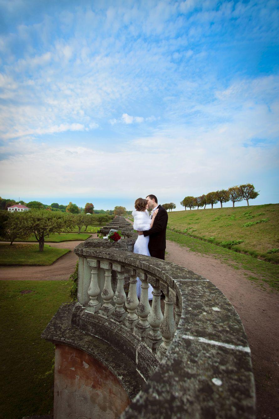 Свадьба в Петергофе - фото 9132556 Фотограф Ольга Воробцова