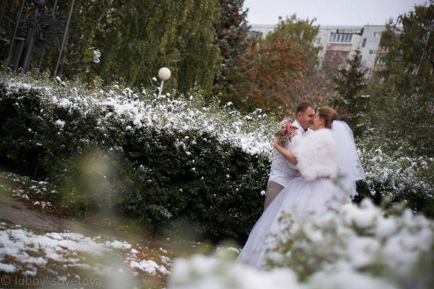 Альберт и Светлана 10.10.15 - фото 8973240 Фотограф Любовь Советова
