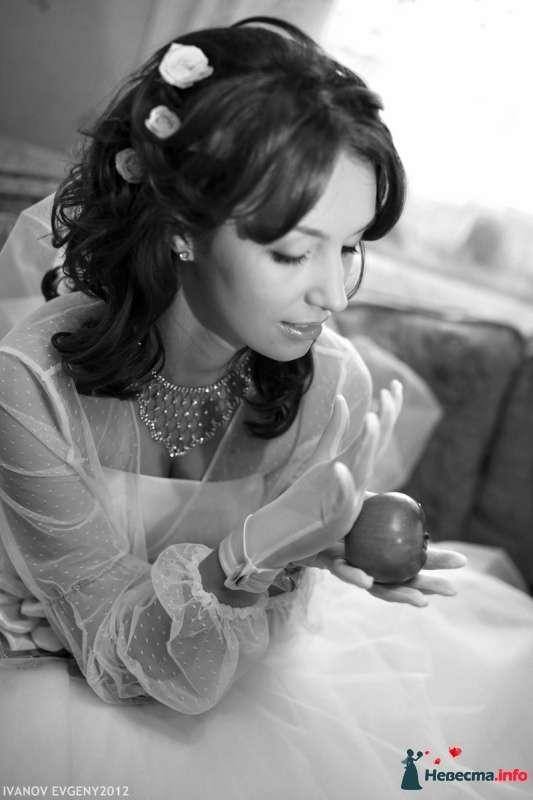Фото 425051 в коллекции Мои фотографии - Свадебный фотограф Евгений Иванов