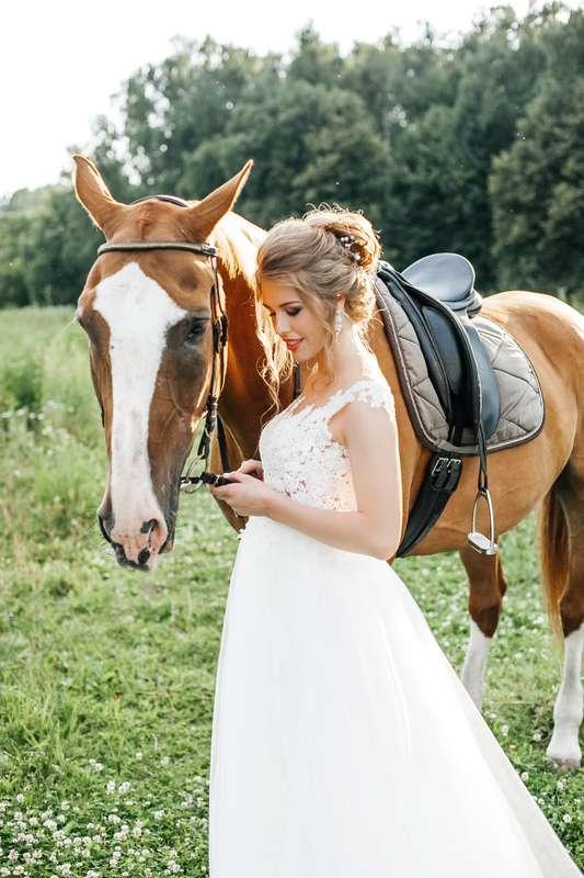 свадебная съемка с лошадьми - фото 15291392 Фотограф Катя Карпешова